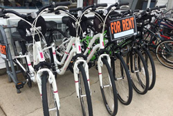 Alibi Marina Bike Rental